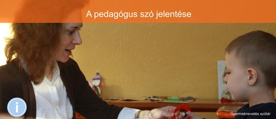 Pedagógus